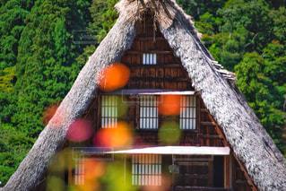 建物の前に大きな木の写真・画像素材[792563]