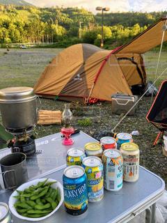 キリンでキャンプの写真・画像素材[1323600]