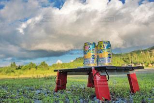 草の中に座っている赤い消火栓の写真・画像素材[1323605]