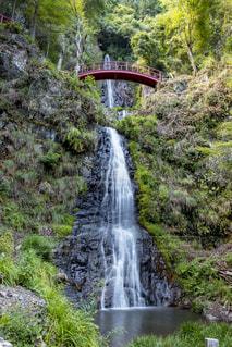 五宝の滝の写真・画像素材[1452858]