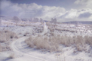 霧ヶ峰の早朝と雲の流れの写真・画像素材[1786812]