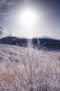 霧ヶ峰に降り注ぐダイヤモンドダストの写真・画像素材[1789325]