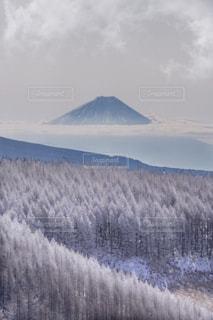 霧ヶ峰で出会ったものの写真・画像素材[1801879]