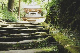 夏の鎌倉の写真・画像素材[2155823]