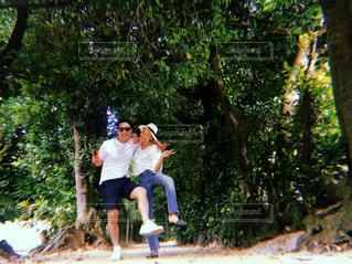木の上に乗る男の写真・画像素材[1631459]