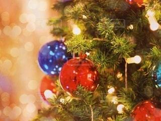 クリスマスツリーの写真・画像素材[2786520]