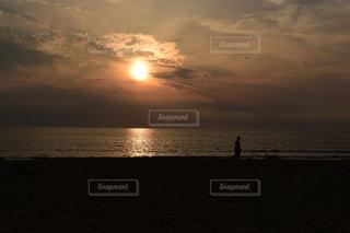 犬,風景,海,空,夕日,屋外,太陽,雲,夕暮れ,散歩,海岸,景色,光,浜辺,夕陽,犬の散歩,光の道,太陽の道