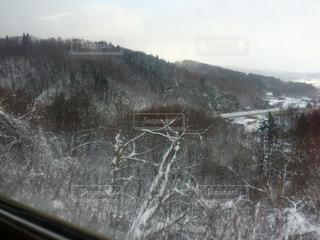 自然,空,冬,雪,白,北海道,雪景色,景色,樹木,ホワイト,道南,雪国