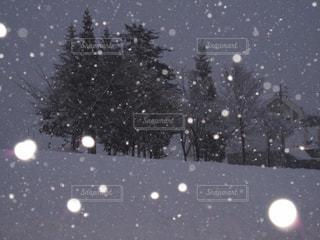 雪,白,スキー場,ホワイト,越後湯沢,吹雪
