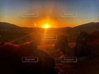 自然,空,動物,屋外,太陽,夕暮れ,夕方,シルエット,日没,光,砂漠,ラクダ,サハラ砂漠,サハラ