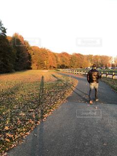 公園,秋,夕日,紅葉,アメリカ,影,道,歩道