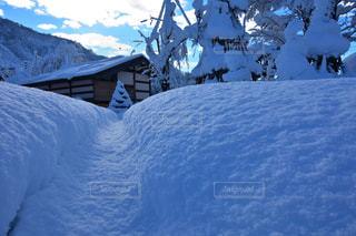 自然,風景,空,冬,雪,景色,美しい,新潟県
