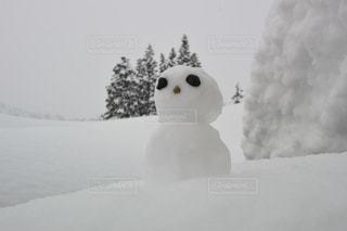 自然,風景,冬,雲,景色,美しい,雪だるま,新潟県,六日町