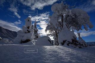 雪の覆われた丘の写真・画像素材[1661553]