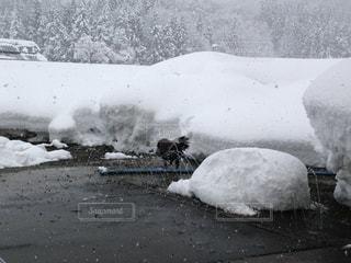 自然,風景,空,冬,雪,美しい,新潟県