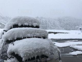 一晩で雪国の写真・画像素材[1663863]