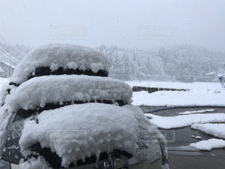 自然,風景,冬,雪,美しい,新潟県,南魚沼