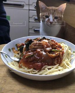 猫,動物,皿,パスタ,料理