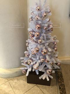 冬,白,クリスマス,ホワイト,イクスピアリ,キュート,ホワイトツリー