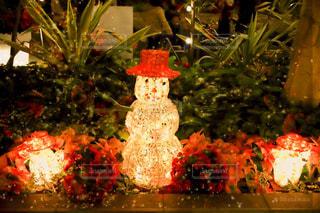 クリスマス ツリーの写真・画像素材[1681283]