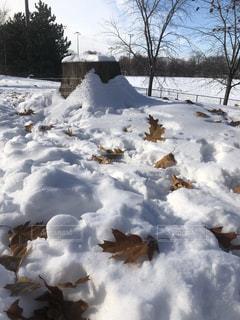 雪の山の写真・画像素材[1649928]