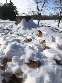 雪の山の写真・画像素材[1679249]