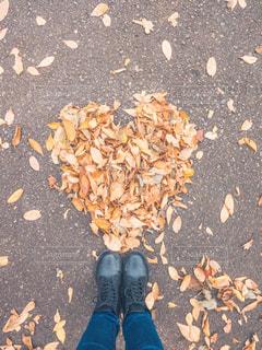 秋の写真・画像素材[1651497]