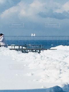 自然,冬,雪,白,雪だるま,ホワイトカラー