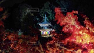 近くに火のの写真・画像素材[1683030]