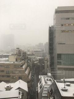 冬,雪,白,渋谷,ホワイト