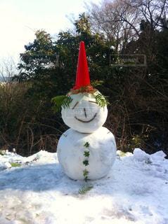 冬,雪,屋外,白,綺麗,アート,樹木,大きい,笑顔,カラーコーン,雪だるま,可愛い,寒い,ホワイト,ライフスタイル