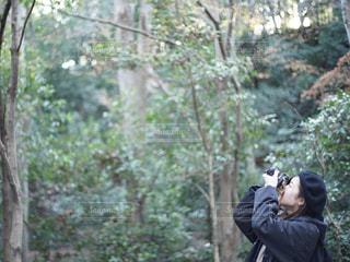 森の横に立っている人の写真・画像素材[1870999]