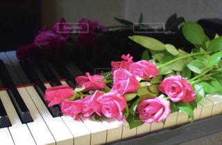 薔薇とピアノの写真・画像素材[1793626]