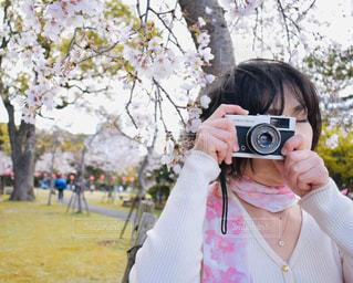 女性,花,桜,ピンク,綺麗,フラワー,flower,はな,pink,さくら,OLYMPUS TRIP 35