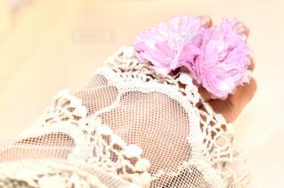 八重桜の指輪の写真・画像素材[4357690]