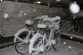 自転車,雪,屋外,白,東京都