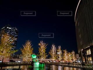 イルミネーション,クリスマス,グランフロント大阪,シャンパンゴールド,グランフロントクリスマス,Grand Wish Christmas 2020,テッドイベール