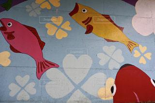 魚ですけどの写真・画像素材[2281562]