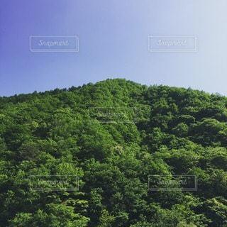 空の写真・画像素材[57883]