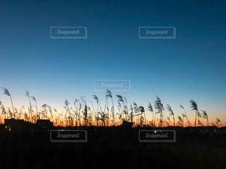背景の夕日の写真・画像素材[1861092]