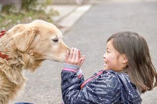 10代,犬,動物,屋外,女,女の子,人物,人,小学生,ゴールデンレトリバー,わんちゃん,笑う,ワンちゃん,吠える,びっくりする,吠えられる