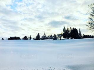 雪,白,スノボ,ホワイト,White,新潟県,白銀,真っ白,あてま高原,あてま高原スキー場,あてま高原ベルナティオ