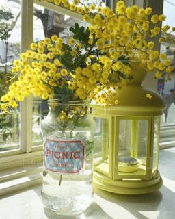 晴れ,黄色,室内,ビタミンカラー,ミモザ,イエロー,出窓,yellow,お天気,イエローカラー