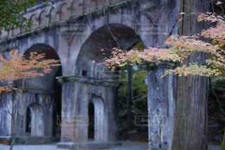 川に石の橋の写真・画像素材[1667675]
