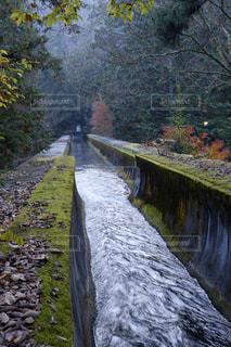 滝の隣に下り列車を走行する列車を追跡します。の写真・画像素材[1667677]