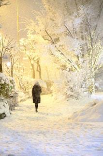雪の上に乗って人が斜面をカバーの写真・画像素材[1667714]