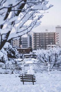 雪に覆われたベンチの写真・画像素材[1680614]