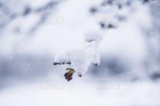 それから出てくる煙と空を飛んでいる飛行機の写真・画像素材[1680633]