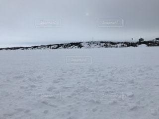 冬,雪,湖,海外,雪原,カナダ,雪国,イエローナイフ,北極圏,北緯60度,北半球
