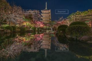 東寺・ライトアップの写真・画像素材[1677717]